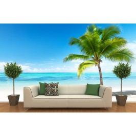 Pláž s palmou (126 x 93 cm) -  Fototapeta na zeď