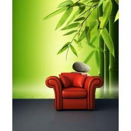 Kamení s bambusem (126 x 115 cm) -  Fototapeta na stěnu