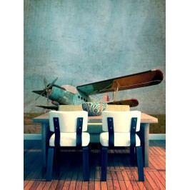 Dvojplošník (126 x 116 cm) -  Fototapeta na zeď