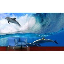 Delfíni ve vlnách (126 x 126 cm) -  Fototapeta na zeď