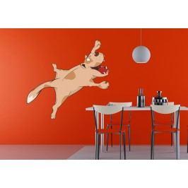Ležící pes (60 x 32 cm) -  Barevná samolepka na zeď