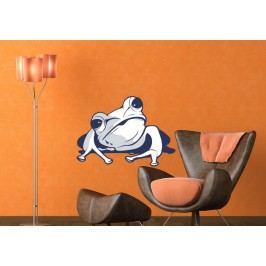 Žába bílá (60 x 42 cm) -  Barevná samolepka na zeď