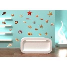 Xdecor Mušle a hvězdy - Barevná samolepka na stěnu