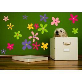Květy barevné - Barevná samolepka na zeď