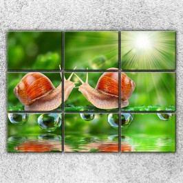 Dva šneci 2 (210 x 150 cm) -  Devítidílný obraz