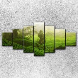 Zelená pláň 2 (240 x 120 cm) -  Sedmidilný obraz