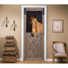 Dveře od stáje (92 × 210 cm) -  Živá dekorace na dveře