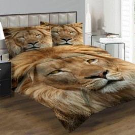 Lví pohled 200 x 140 cm, 90 x 70 cm - Fotopovlečení