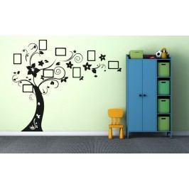 Strom na fotky (50 x 40 cm) -  Samolepka na zeď