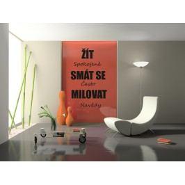 Žít spokojeně (80 x 50 cm) -  Citát samolepka na zeď