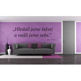 Hledali jsme štěstí (98 x 31 cm) -  Citát dekorace na zeď