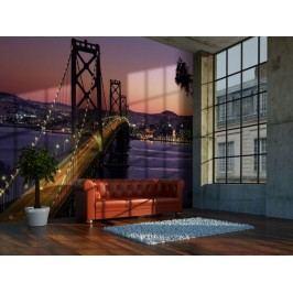 Murando DeLuxe Fialová tapeta San Francisco 150x116 cm