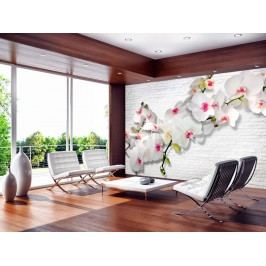 Murando DeLuxe Orchidej na bílé cihle 150x105 cm