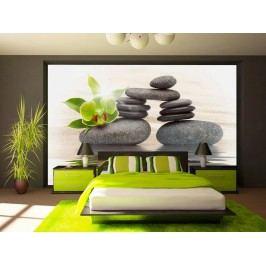 Murando DeLuxe Zelená orchidej na kameni 150x105 cm