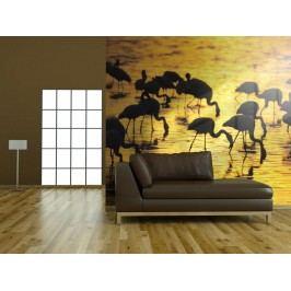 Murando DeLuxe Tapeta (150x116 cm) -  Plameňáci