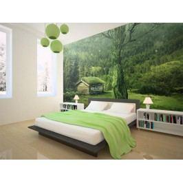 Murando DeLuxe Zelená samota 150x116 cm