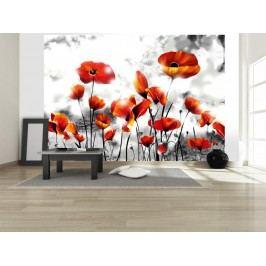 Murando DeLuxe Křehká krása 150x105 cm
